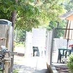 Foto de Timberline Lake Camping Resort