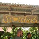 Scothies