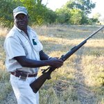 Bee, great guide - rifle required for safety during walk
