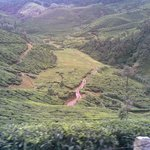 munnar side view