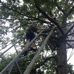 J climbing to treehouse#1!