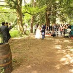 woodland were the ceremony took place