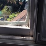Window sills mucky and rotten