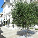 Villa Caroline- Terrasse