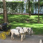 Gentle white horses and carriages are the symbol of the hotel.
