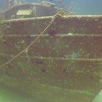 Sea Viking Wreck