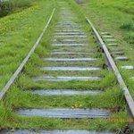Vías tren hacia Auswicht