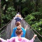 Swinging bridge tour