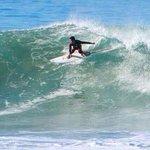surfing bartender
