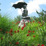 Poppies frame this beautiful statue