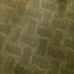 Carpet in room