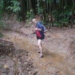 A tad muddy at times!