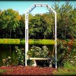 rose trellis by the pond at Villa Antonio