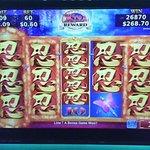 this casino let me have FUN