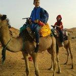 Paseo en los camellos