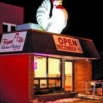 Chicken on top of the roof!