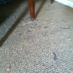 this is not loose debris, its the carpet falling apart