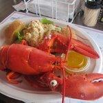 2lb lobster