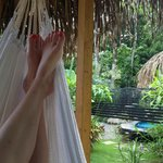 The hammock, our favorite spot!