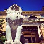 Hello, Cotton Mansion!