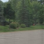 Hampton Inn & Suites East Lansing / Okemos Foto