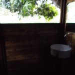 Bathroom View from Tree House