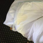 bedding stains