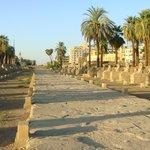 Avenida de las Esfinges a la Entrada del Templo de Luxor.