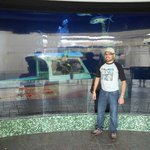 acuario del parque acuatico del mall la isla