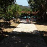 Allée du camping avec la piscine en fond