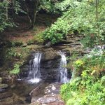Once you climb the steep stone steps and hike for a few meters you'll come to this pretty, but s