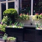 Our facade Little Garden