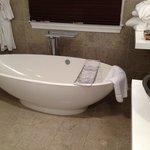 the fabulous tub