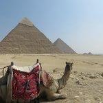 Pyramids trip