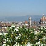 Вид на Флоренцию с площади Микеланджело
