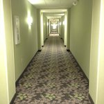 The Hallway... O.O