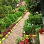 Garden View From Balcony Of Super Duluxe