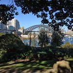 Walked down the hill to Lavender Bay, 10 min's.
