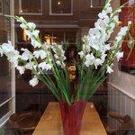 gladioli in Prego's window
