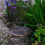 Back garden chair