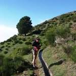 A short hike on a levada trail