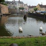 Pond in Belleme