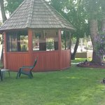 Gazebo in our Courtyard