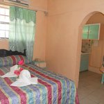 Standard Single/Double Room with Kitchenette