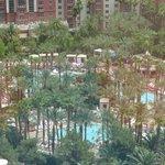 udsigt til have og pool