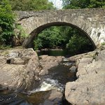 Bridge over falls