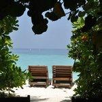 l'accès à la plage du bungalow