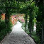 Trauttmansdorff: Blooming Passage