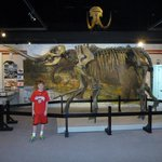 Grandson Jack with mastadon and wooly mammoth exhibit