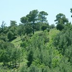 le paysage